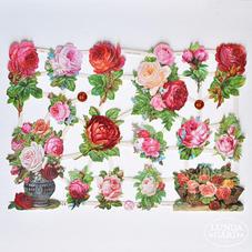 Glansbilder - rosor