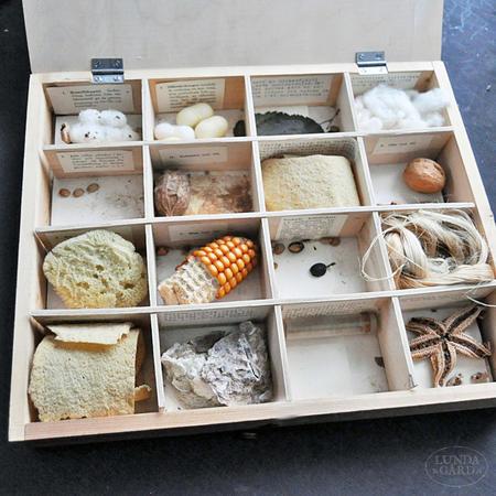 Vanha koululaatikko